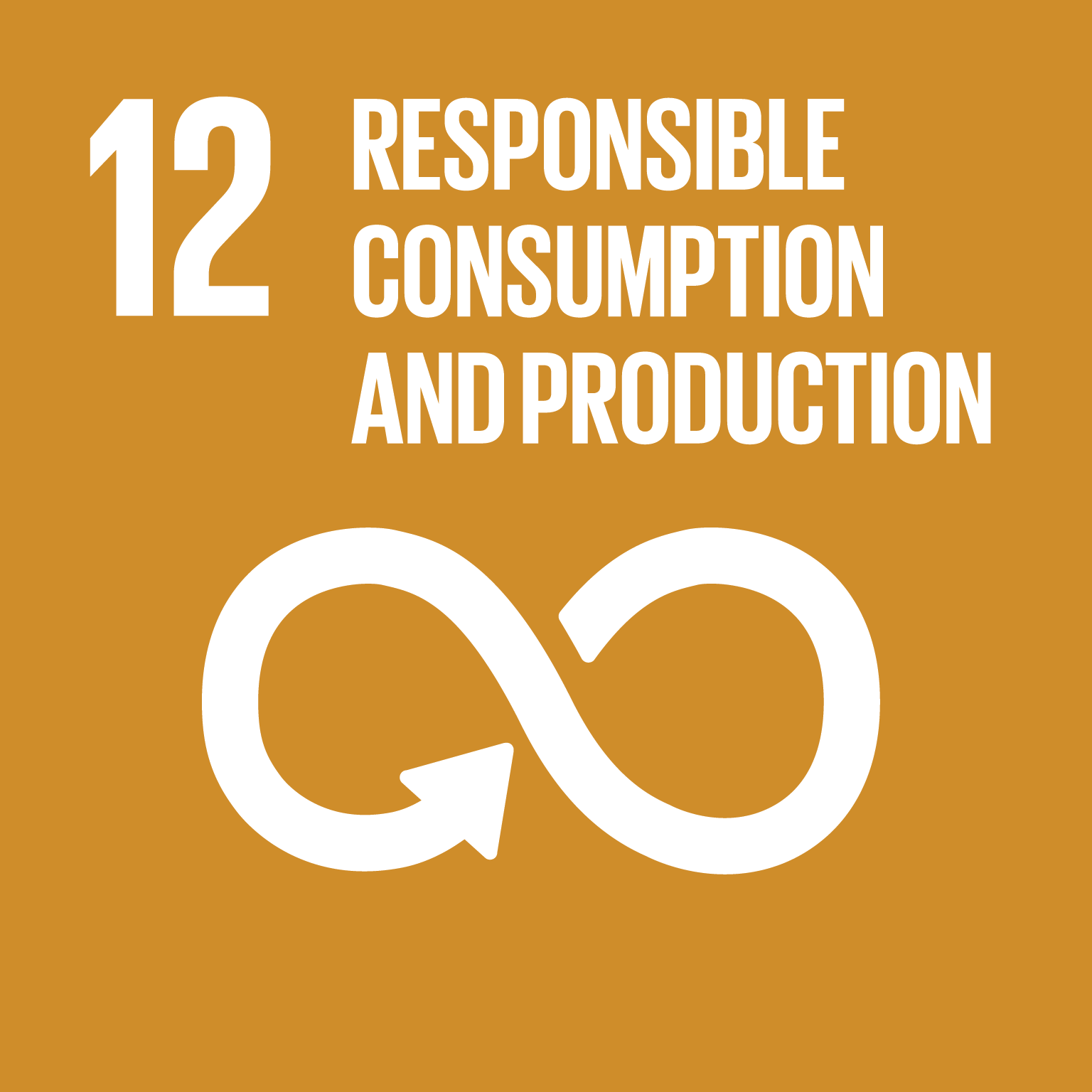 Goal 12 Sustainable Development Knowledge Platform
