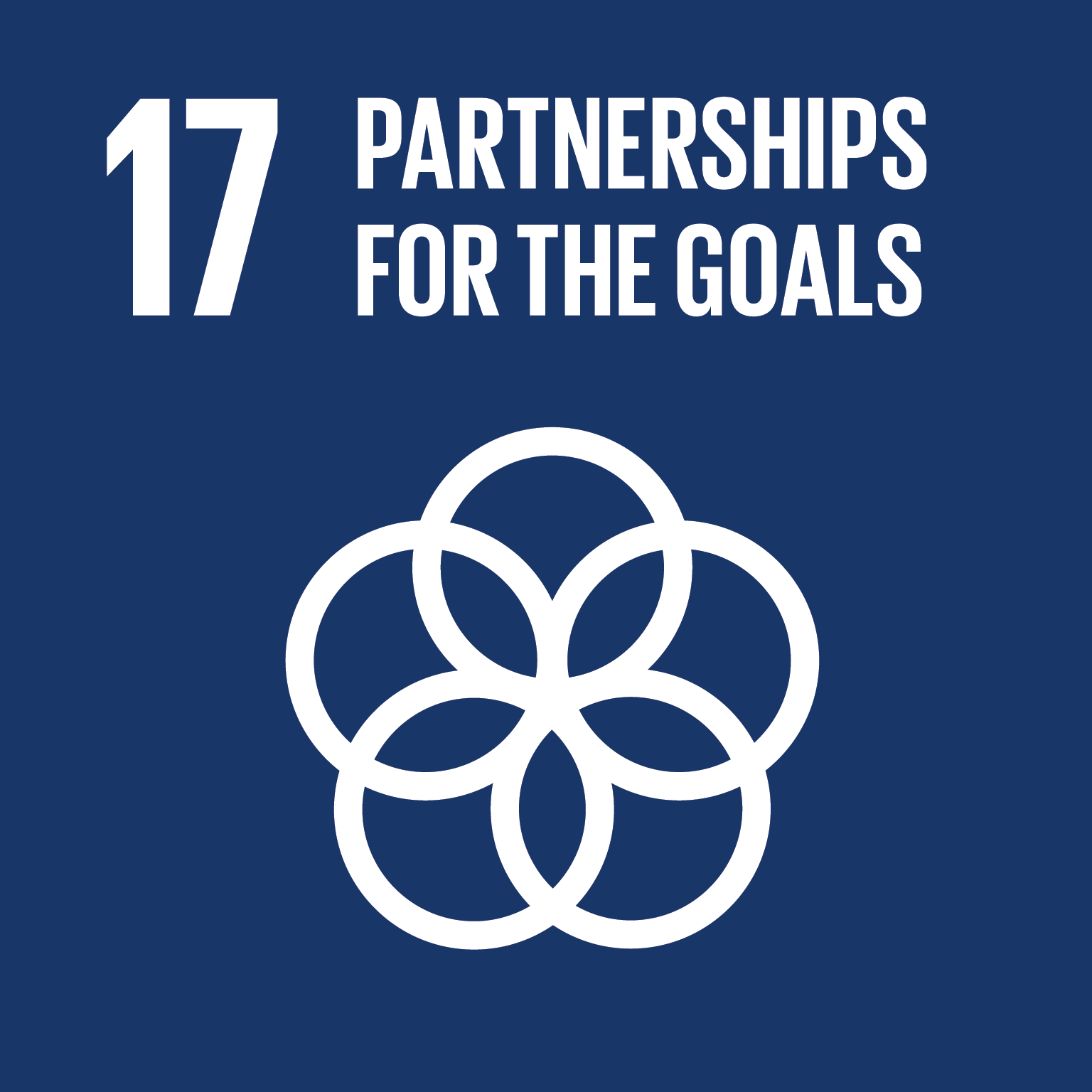 Afbeeldingsresultaat voor sustainable development goals 17