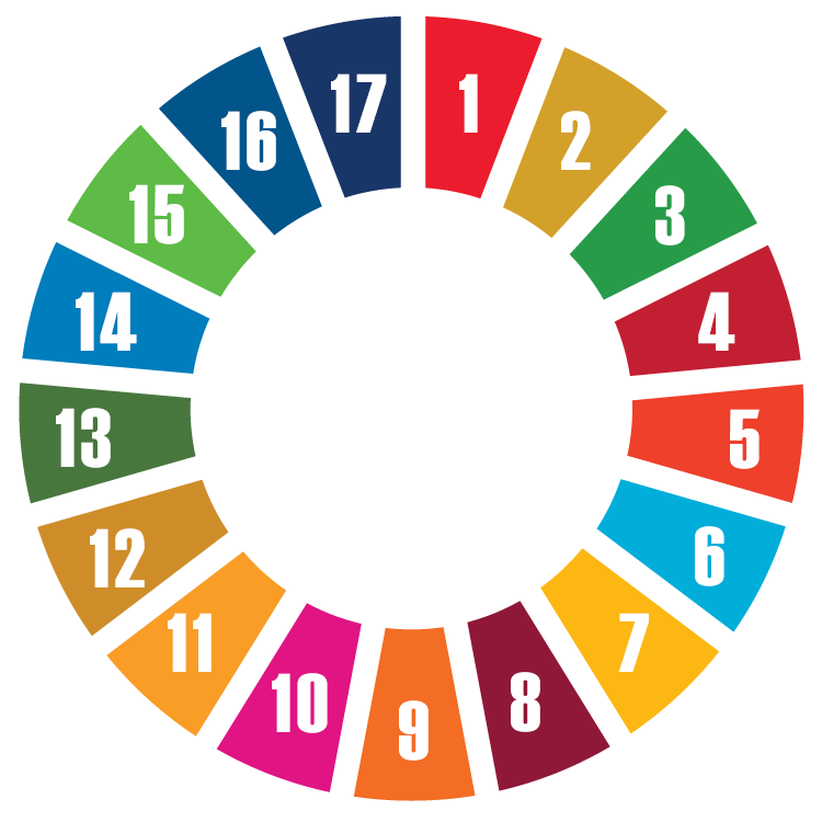 Image result for sdgs circle