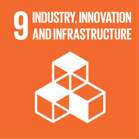 SDG 9: Build resilient infrastructure, promote inclusive and sustainable industrialization and foster innovation