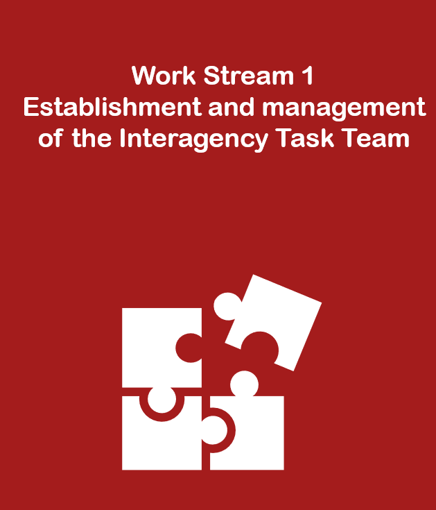 Work Stream 1: Establishment and management of the Interagency Task Team