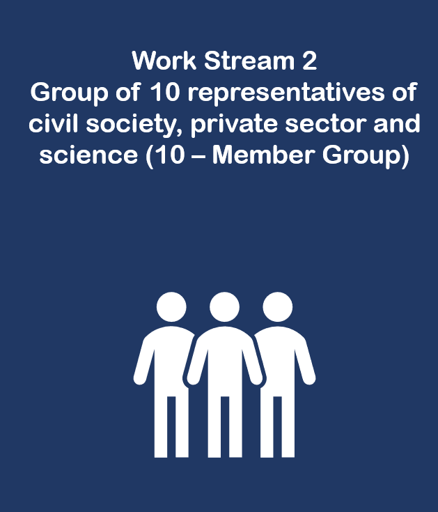"Work Stream 2: Group of 10 representatives of civil society, private sector and science (""10-Member Group"")"