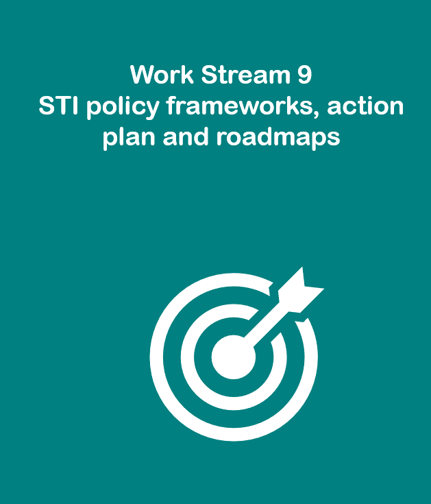 Work Stream 9: STI policy frameworks, action plan and roadmaps