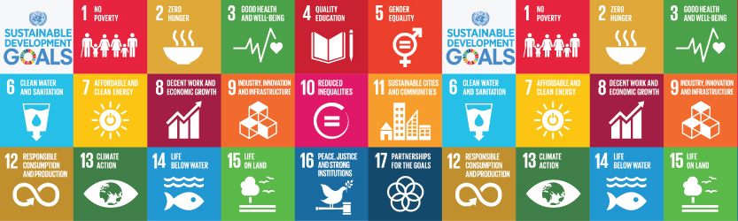 launch of new sustainable development agenda to guide development