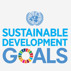 Image result for sdgs