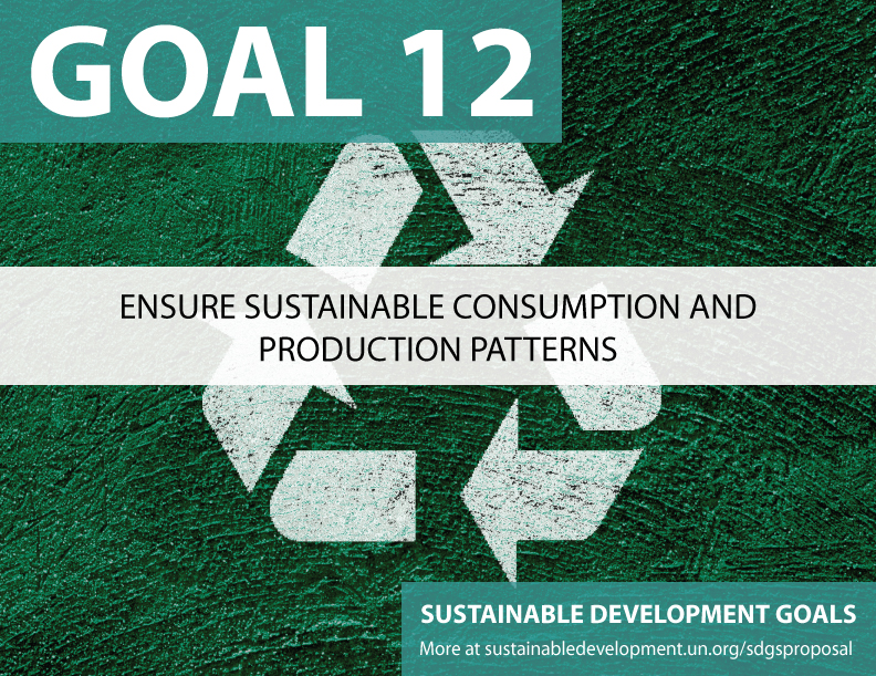Proposal for Sustainable Development Goals  :  Sustainable